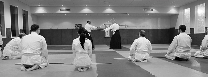 fundamental aikido